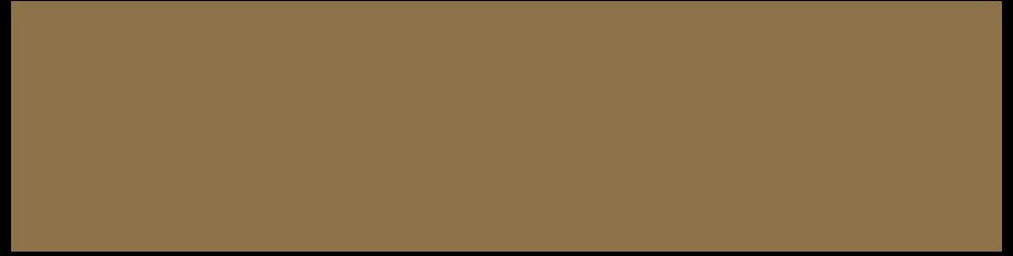 Ajman E-goverment